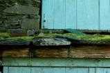 Mossy roof on Ambleside boathouse 2